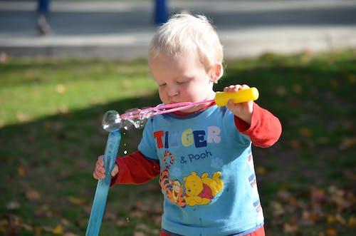 Foto profissional grátis de crianças, garoto, parque, parquinho infantil