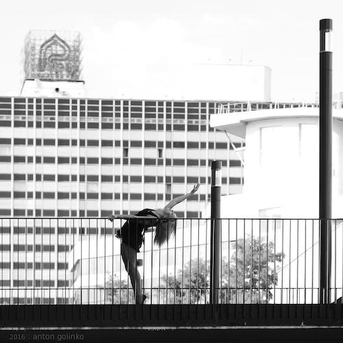Imagine de stoc gratuită din alb-negru, arhitectură, balustrade, călătorie