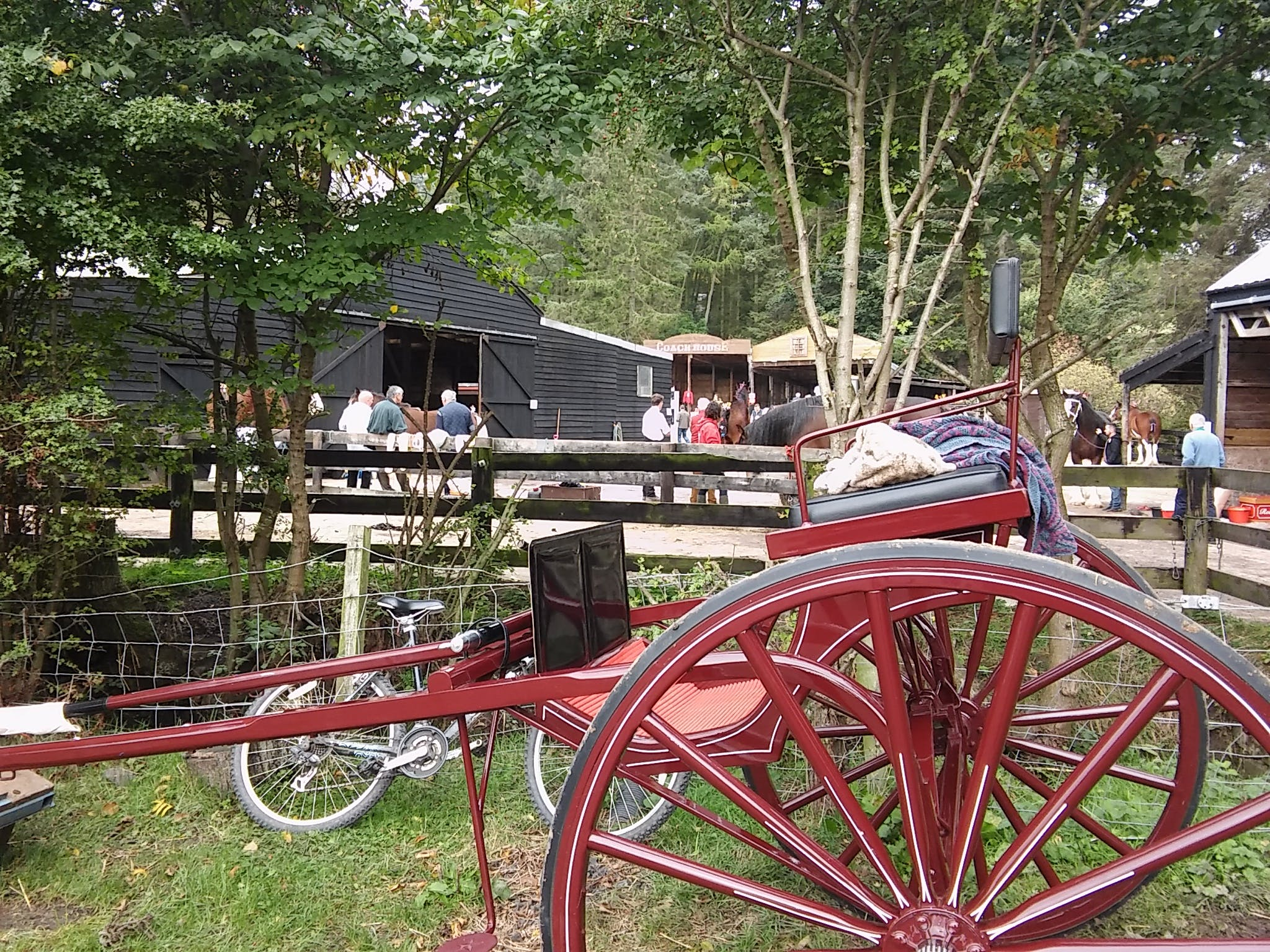 Free stock photo of antique, horse and cart, horse buggy, old cart