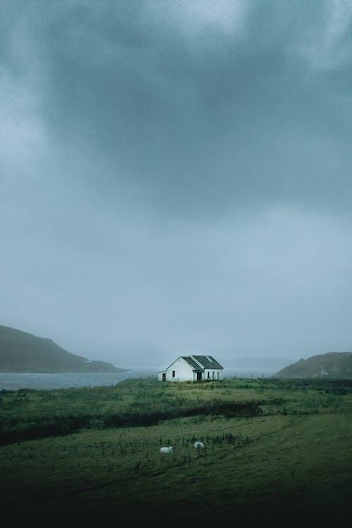 Základová fotografie zdarma na téma denní světlo, dům, hory, hřiště