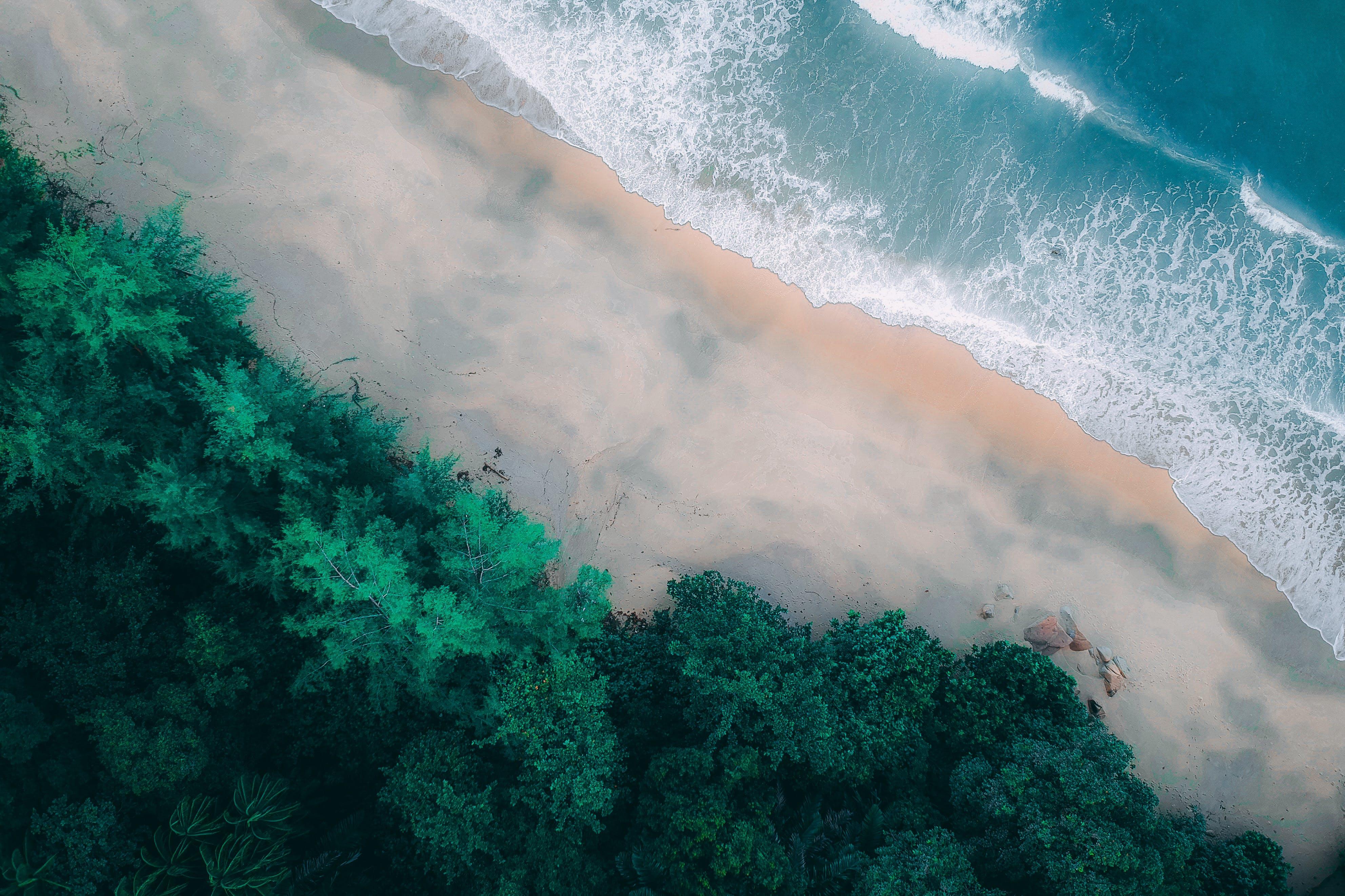 Foto profissional grátis de aerofotografia, ao ar livre, beira-mar, de cima