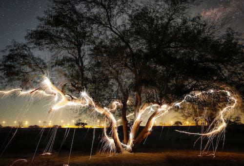Ingyenes stockfotó éjszakai fénykép, fa, kuvait, sivatag témában