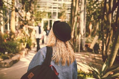 Foto stok gratis alam, bagus, berbayang, berfokus