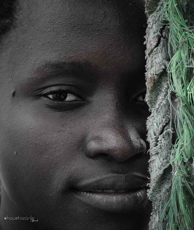 estrella africana, foto vertical, fotografia vertical