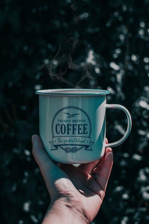 beguda, beure, cafè