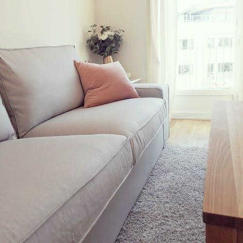 Darmowe zdjęcie z galerii z dom, sofa, wnętrze