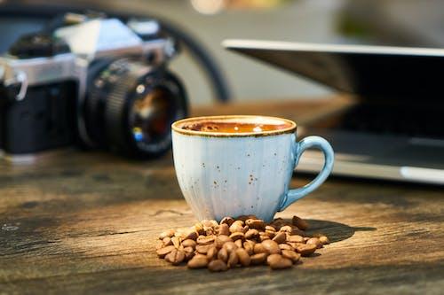 Gratis lagerfoto af bokeh, bønner, cappuccino, close-up