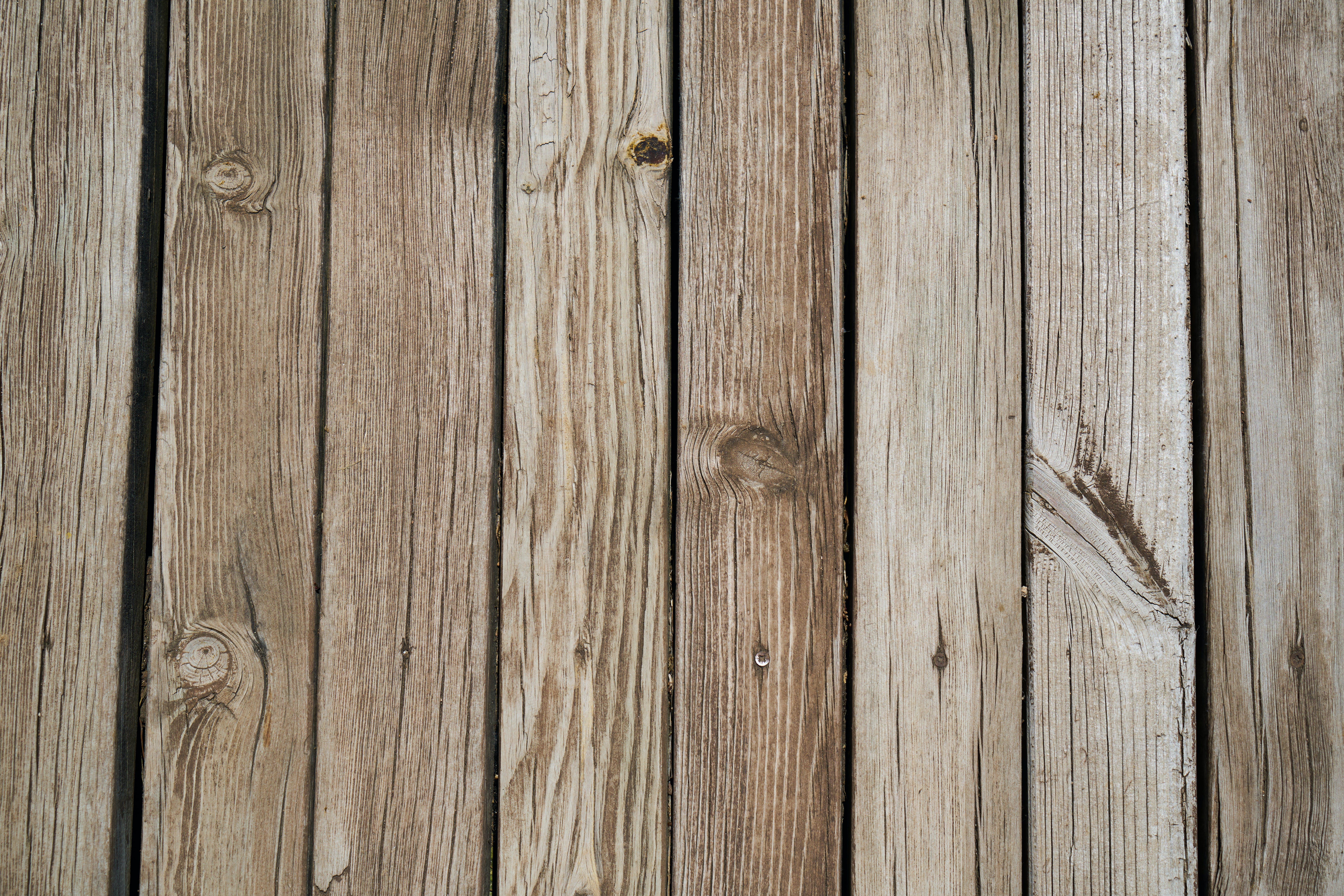 Kostnadsfri bild av 4k tapeter, barrved, grov, hårt träslag