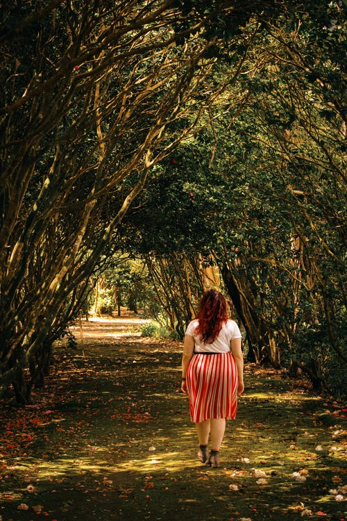Photos gratuites de arbres, chemin, espace extérieur, extérieur
