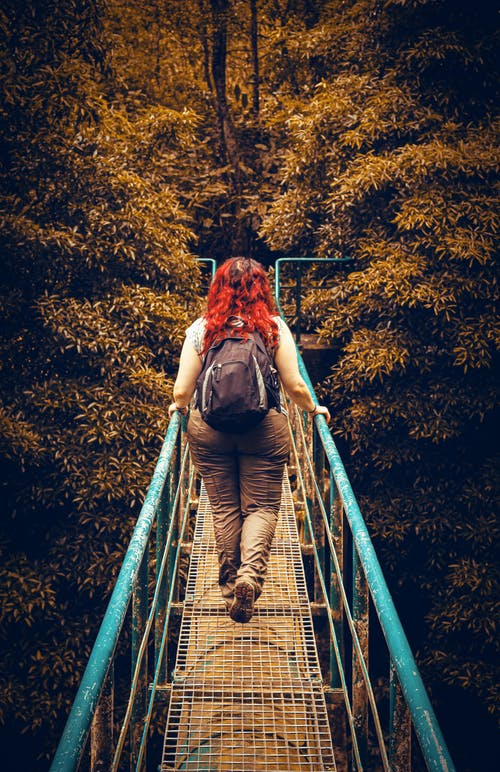 Foto stok gratis berjalan, hiker, jembatan, kaum wanita