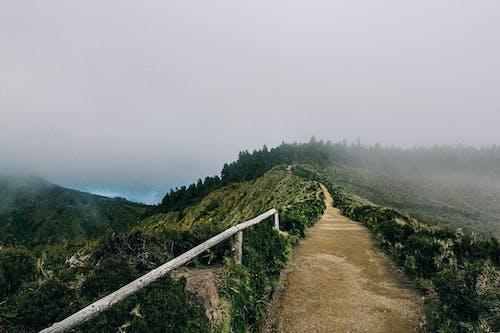 Kostnadsfri bild av berg, dimma, dimmig, gångväg