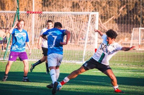 Imagine de stoc gratuită din jucători de fotbal