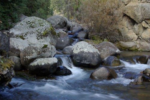Ilmainen kuvapankkikuva tunnisteilla joki, luonto, Yellowstonen kansallispuisto