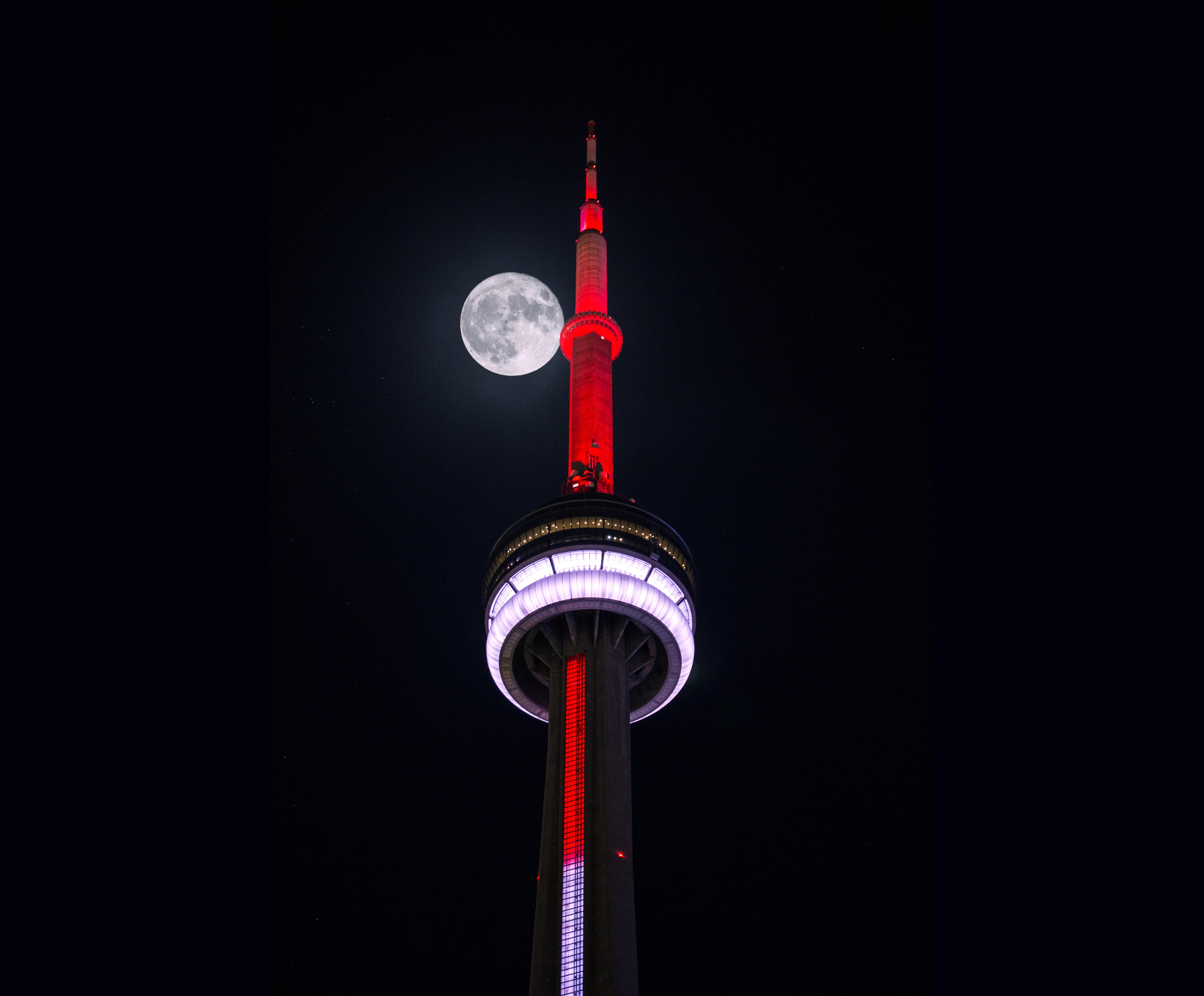 Blasen in Toronto Dunkle Pussy fick
