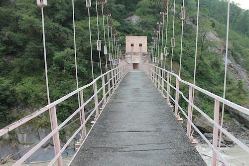 Gratis lagerfoto af bro, flod, hængebro, rækværk på bro