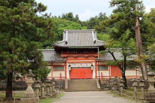 Photos gratuites de arbres, japon, Japonais, kansai