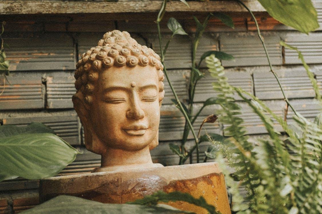 Selective Focus Photography Of Buddha Head