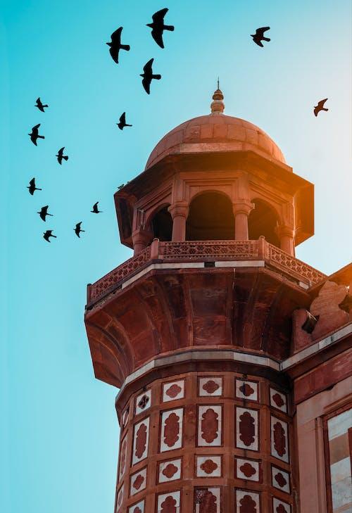 Безкоштовне стокове фото на тему «minar, ісламська архітектура, ісламський, історичний»