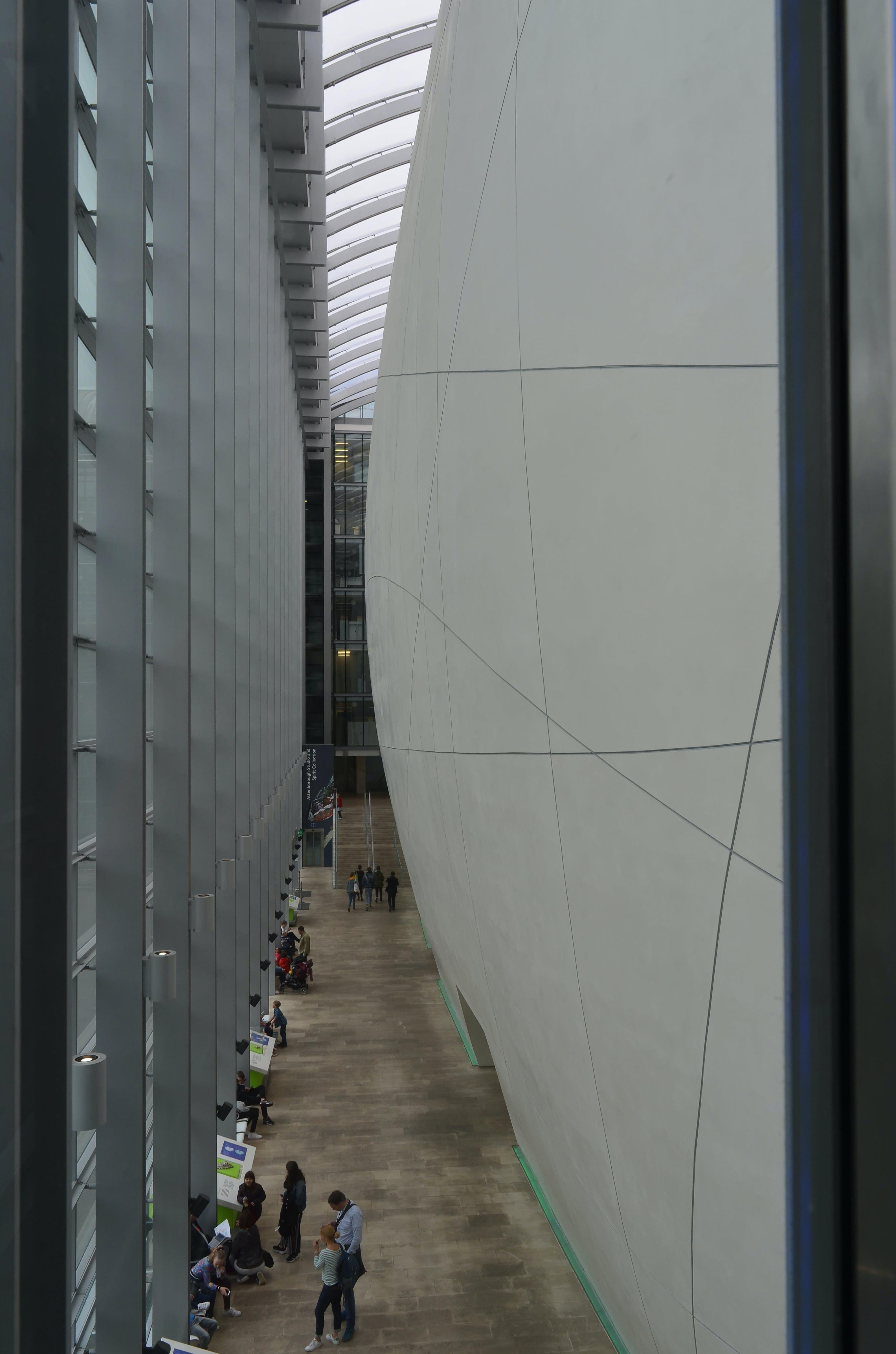 Gratis arkivbilde med abstrakte linjer, arkitektur, bølgende veggen, fugleperspektiv