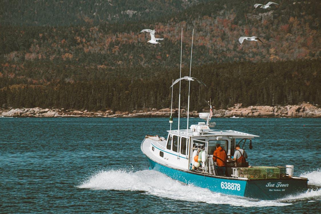 barca, embarcació d'aigua, EUA