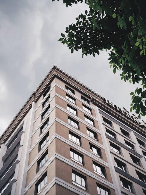 ローアングル写真, 外観, 屋外, 建物の無料の写真素材