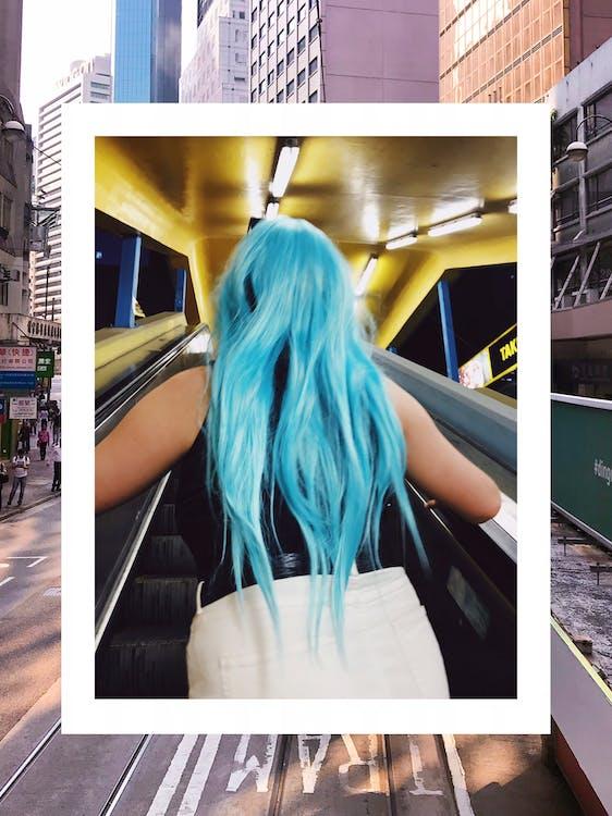 도시의, 머리, 모델