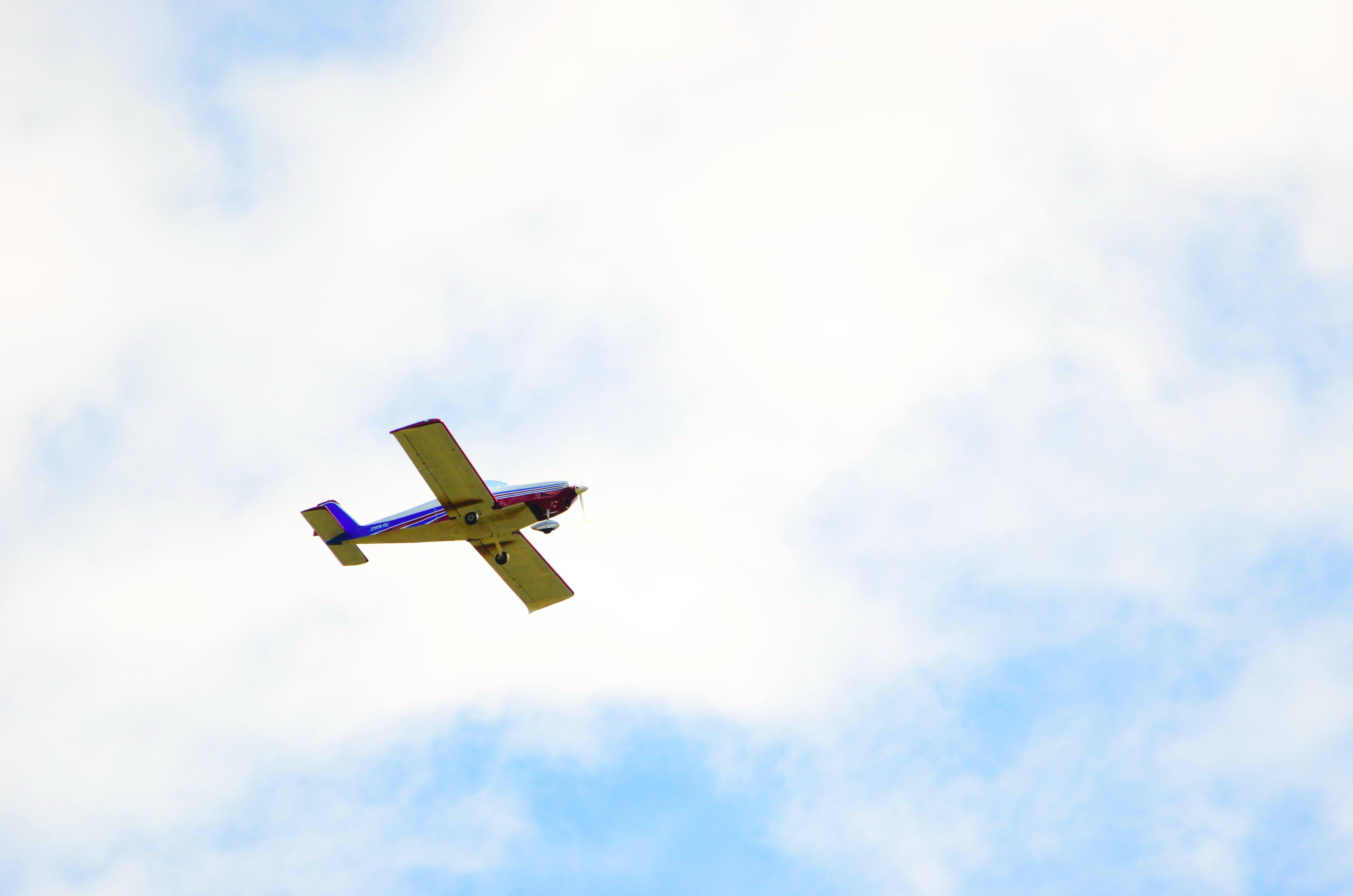 Free stock photo of flight