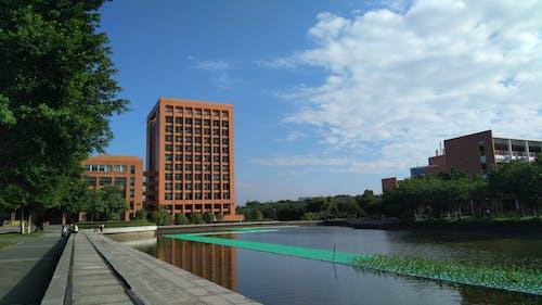 Kostnadsfri bild av arkitektur, byggnad, damm, vatten