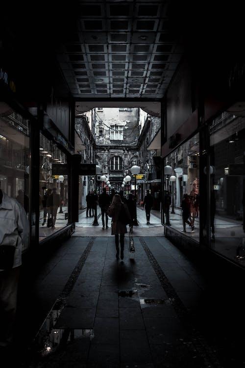 arquitectura, belgrad, caminant