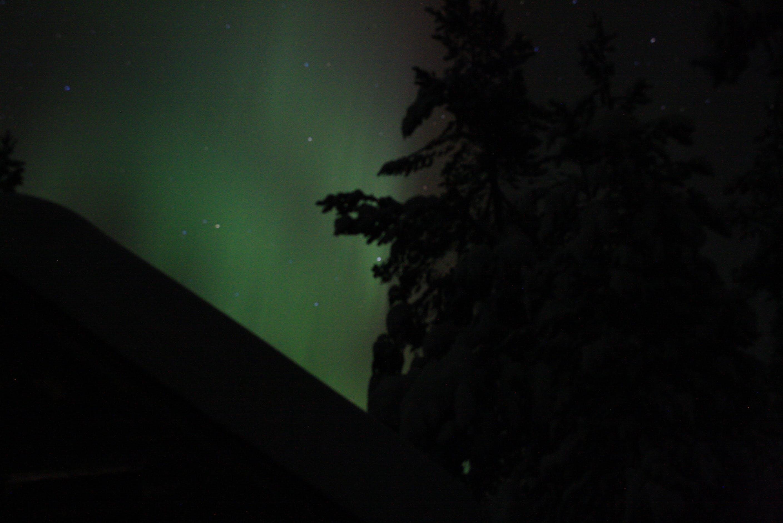 Free stock photo of polar lights
