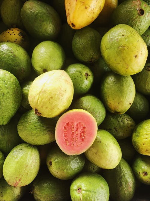 Free stock photo of fruit, guava