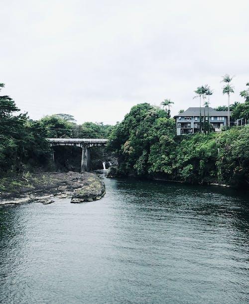 Free stock photo of paradise