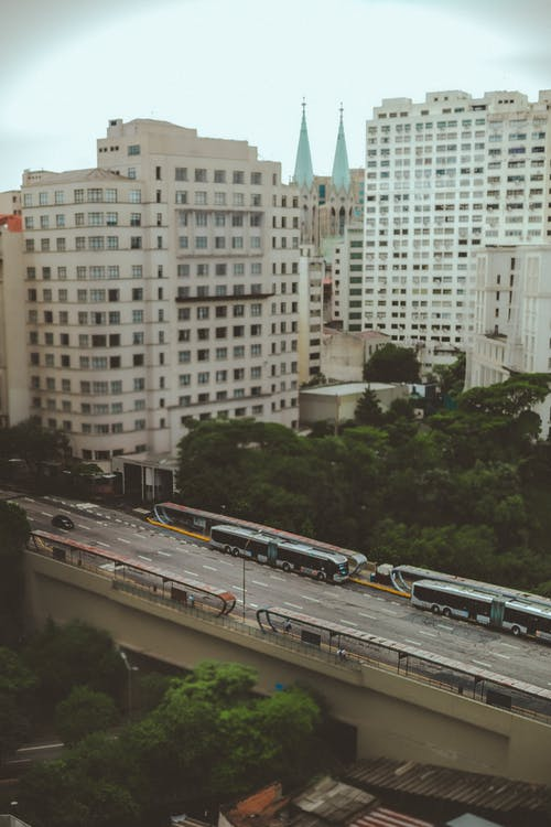 Immagine gratuita di alberi, architettura, autobus, autostrada