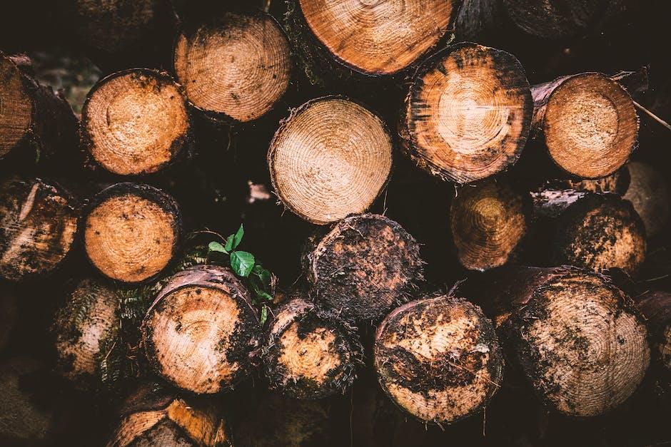 Brown and beige wood logs