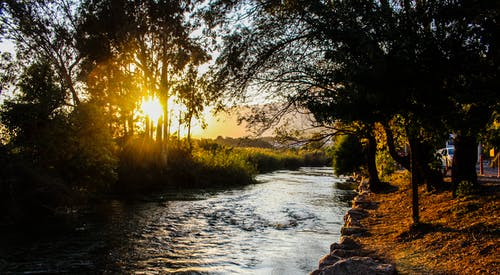 Foto d'estoc gratuïta de aigua, alba, arbres, capvespre