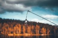 fishing, water, trees