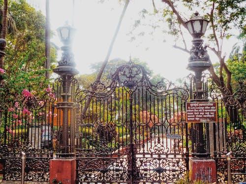 Ảnh lưu trữ miễn phí về cây xanh, không gian thiết kế, thiết kế kiến trúc, vườn