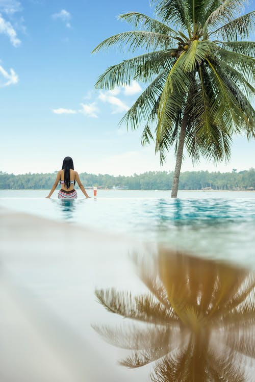 Woman in Water Near Coconut Palm Tree