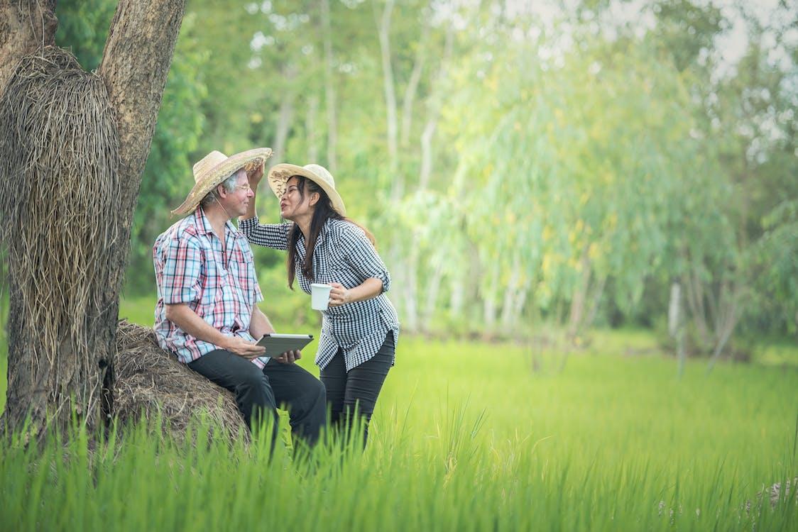 Free stock photo of countryside, couple, elderly