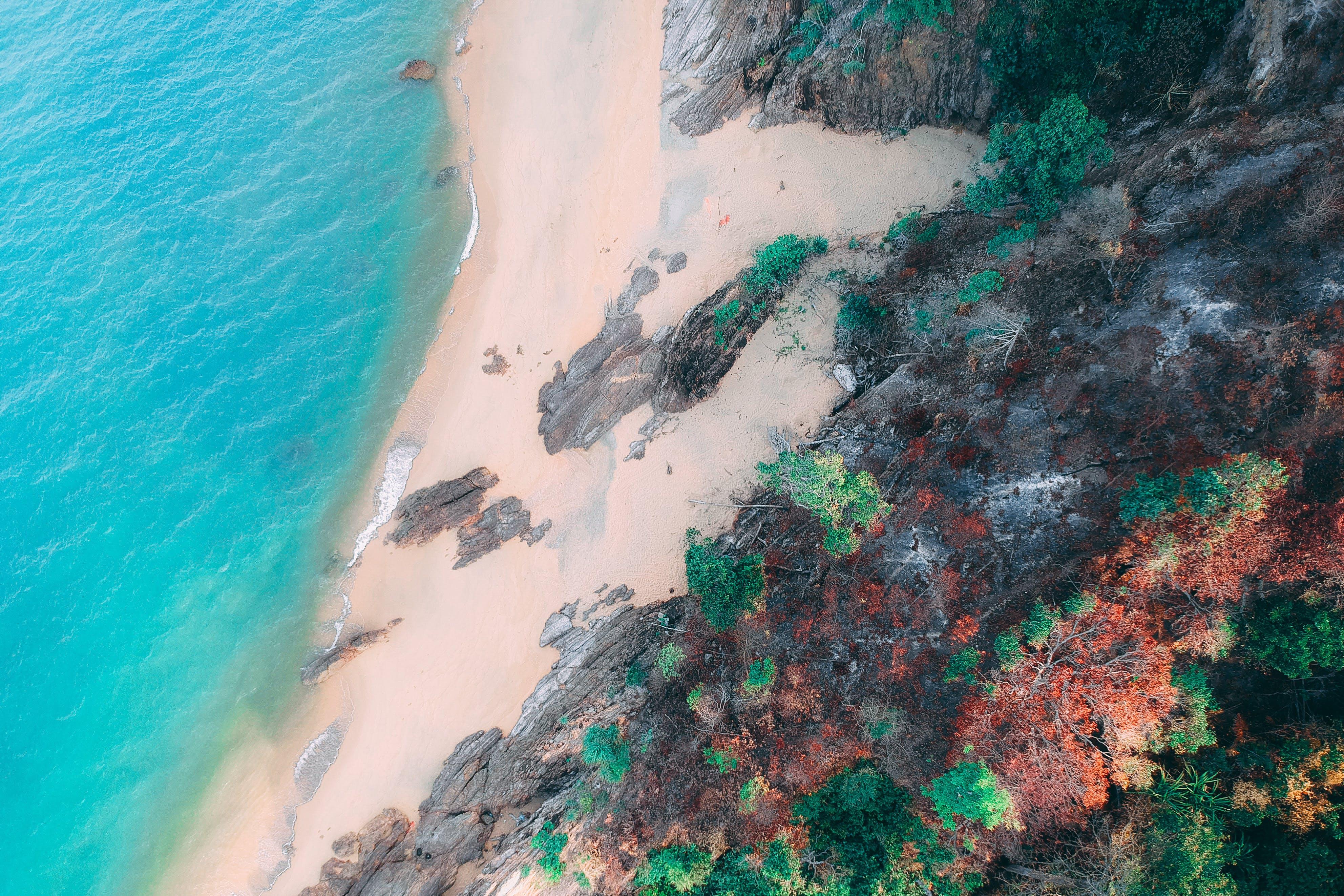 Foto profissional grátis de água, areia, artístico, borrifar
