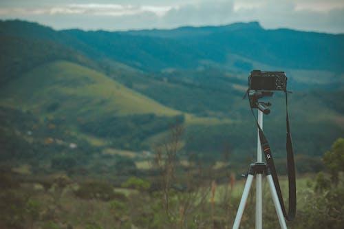 Základová fotografie zdarma na téma cestování, denní světlo, fotoaparát, fotografie