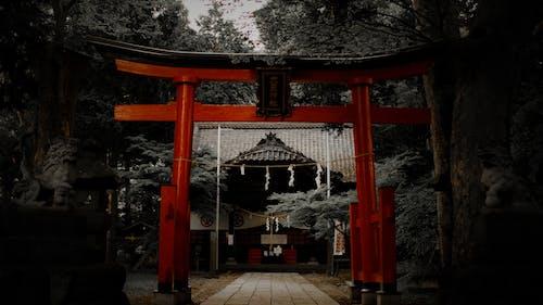 Foto d'estoc gratuïta de cultura japonesa, Japó, temple budista, temple de japó