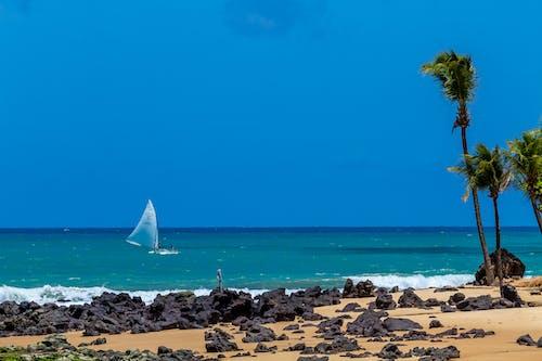 Foto profissional grátis de barco, barco de pesca, cabana de praia, cabanas de praia