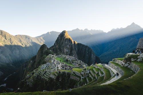 Základová fotografie zdarma na téma cestování, denní světlo, dřevo, hora