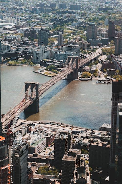 全景, 吊橋, 商業, 地標 的 免费素材照片