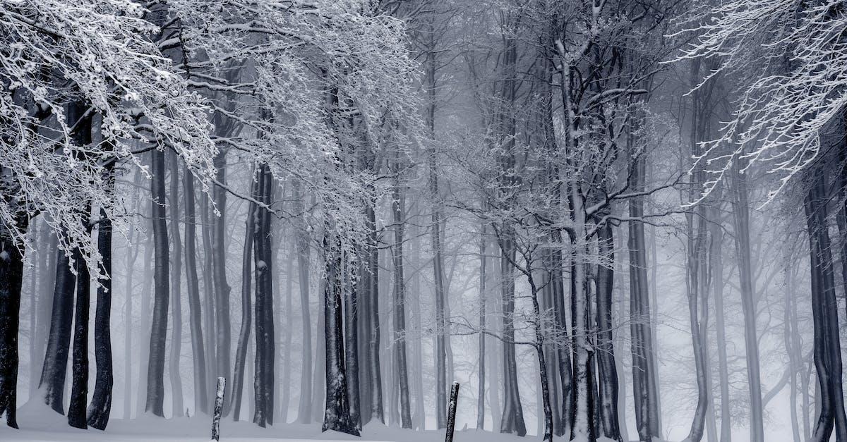 snow whiteside, mo - 1000×667