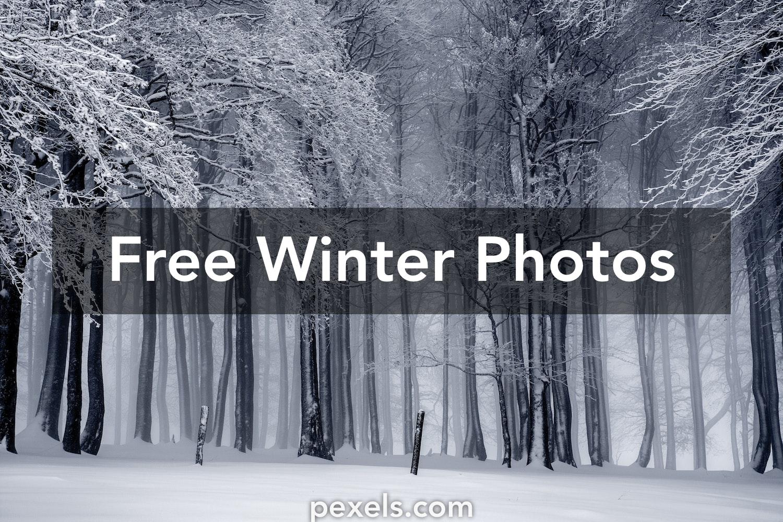 Winter pictures · Pexels · Free Stock Photos