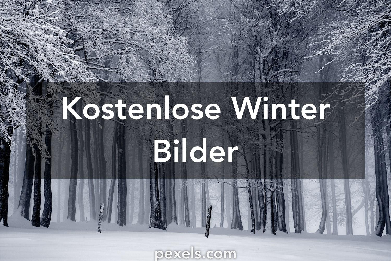 winterbilder pexels kostenlose stock fotos. Black Bedroom Furniture Sets. Home Design Ideas