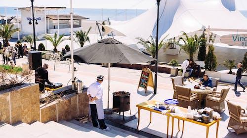 Immagine gratuita di chef, commercio, cuoco, hotel