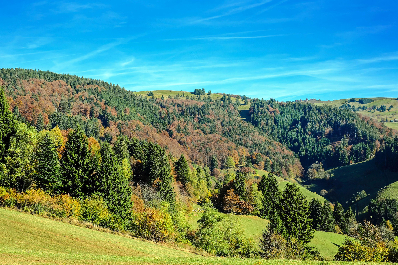 Gratis lagerfoto af bjerge, blå himmel, dagslys, græs